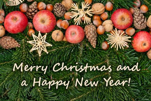 クリスマスカードにも、メールにも使える!クリスマスメッセージ英語例文集-ビジネス編