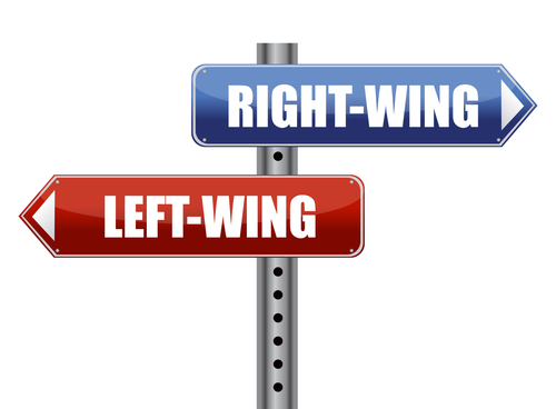 Leftist(rightist)/ left (right) wing:左翼/右翼